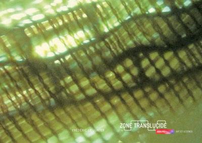 Frédéric Le Junter, « Zone translucide », carton d'invitation. Conception graphique : Yann Febvre.