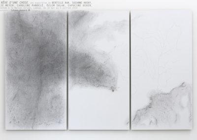 « Le rêve d'une chose », exposition de Bertille Bak, Suzanne Husky, Julie Meyer, Caroline Pandelé, Özlem Sulak, Capucine Vever.