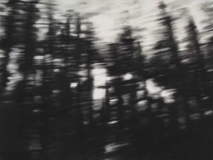 Carlijn Mens, «En mouvement»