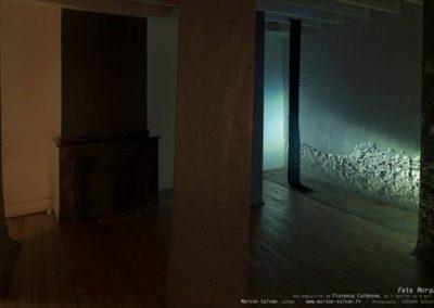 Florence Carbonne, Exposition «Fata Morgana» à la Maison Salvan.