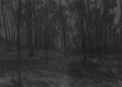 Marie Reinert, Dove Allouche, JulienNicolas, Jürgen Schilling, «L'Écoulement du paysage»