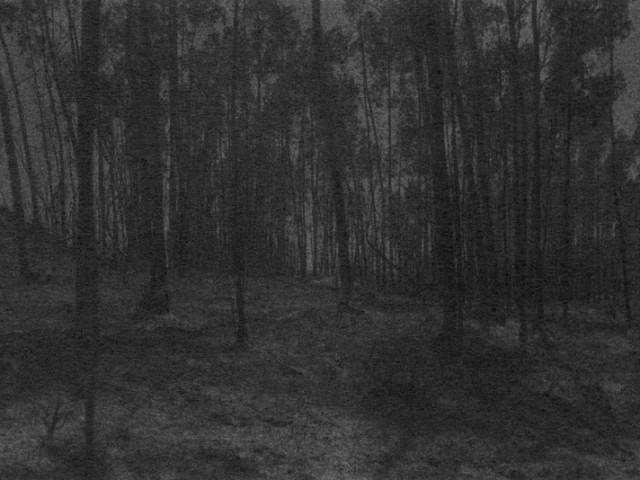 Marie Reinert, Dove Allouche, Julien Nicolas, Jürgen Schilling, «L'Écoulement du paysage»