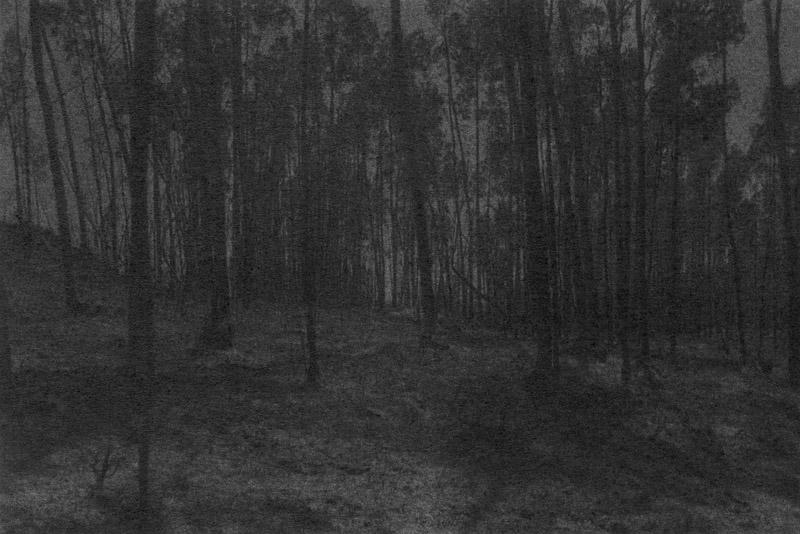 Marie Reinert, Dove Allouche, Julien Nicolas, Jürgen Schilling, « L'Écoulement du paysage »