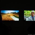 """Vernissage de l'exposition """"Hors la foule"""" de Yeondoo Jung dans le cadre du festival Made in Asia."""