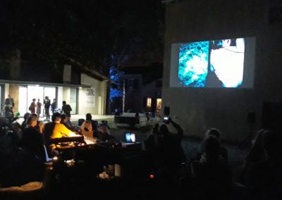 Concert projection de Gaël Bonnefon et Tana Barbier à la Maison Salvan, 2019. Photographie : Maison Salvan.