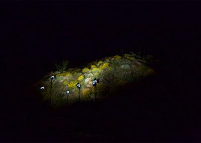 Image extraite d'une vidéo © Charlotte Dalia, The Desert Project.